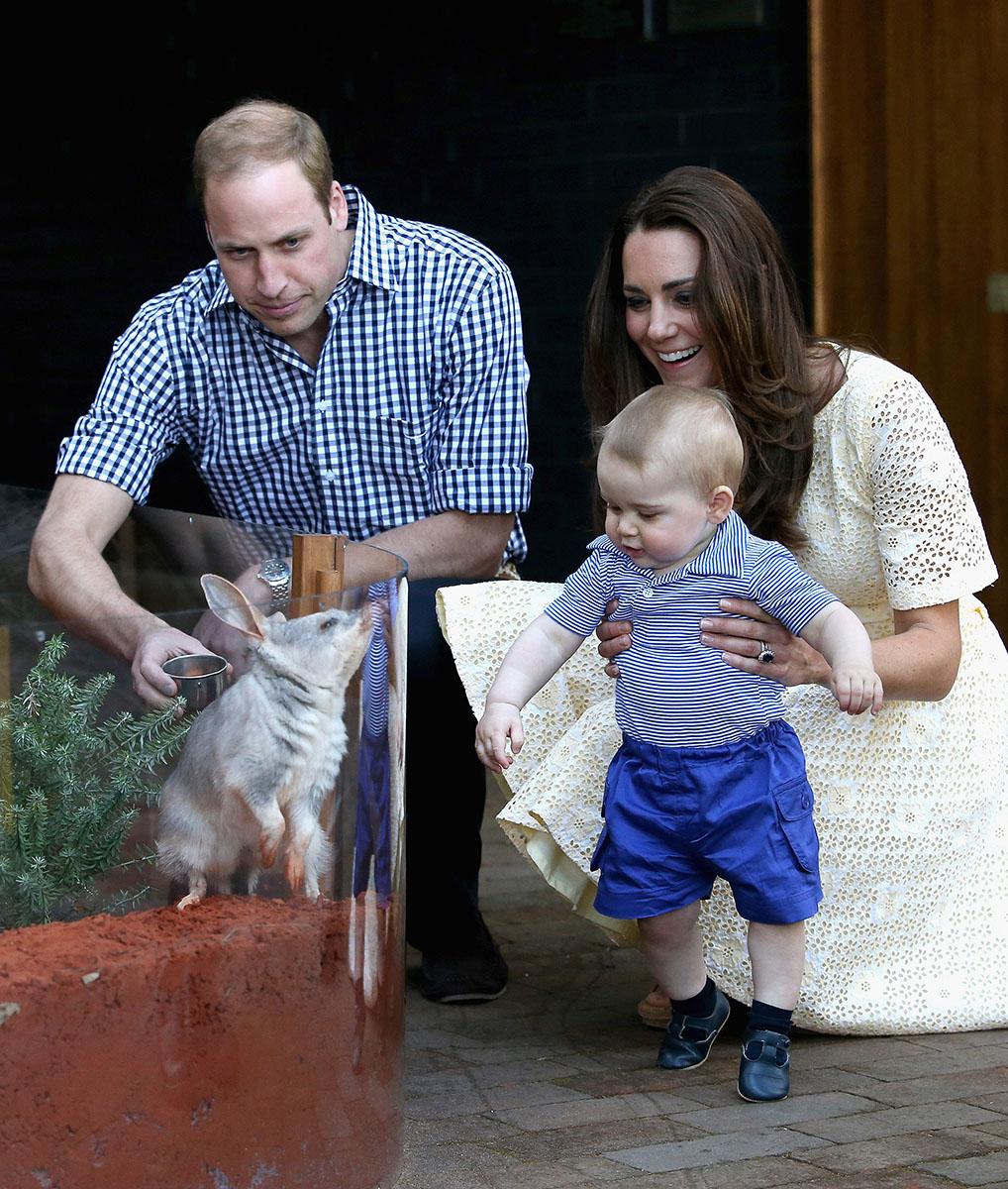 b9197ba7f El Príncipe George en el Zoo