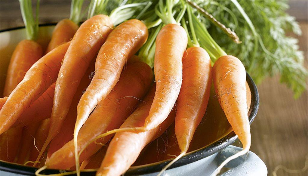 Zanahoria dulce y llena de nutrientes - Dulce de zanahoria ...