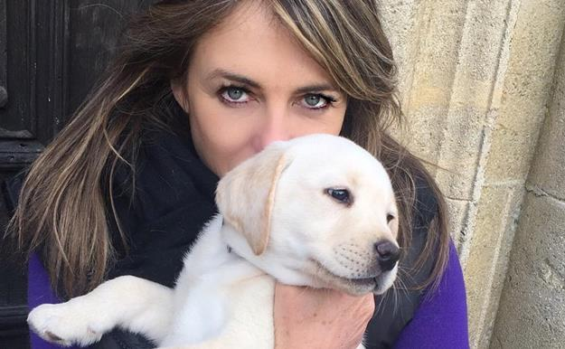 Liz Hurley recibirá una indemnización de Amazon por el atropello de su mascota