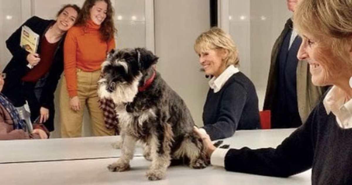 Scott, el perrito de la madre de Mercedes Milá, toda una 'star' sobre el escen - Lecturas